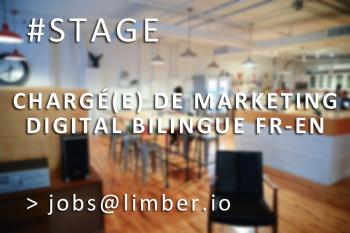 stage-markg-digital